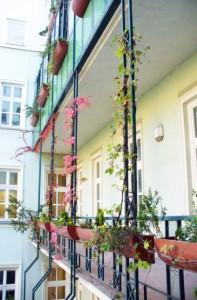 Studentenhaus-AAI-Balkon-2